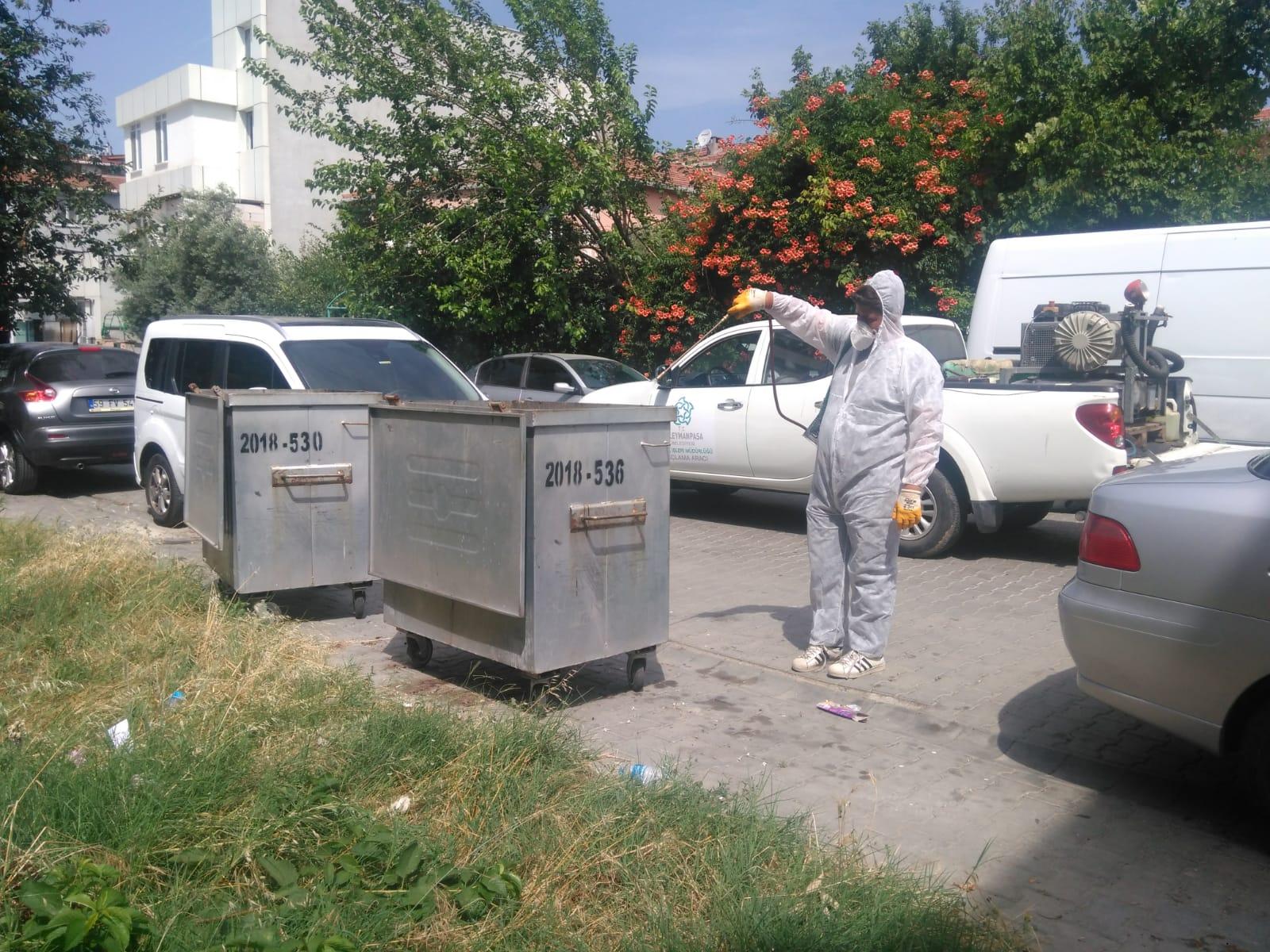 Karasineğe karşı çöp konteynerleri ilaçlanıyor