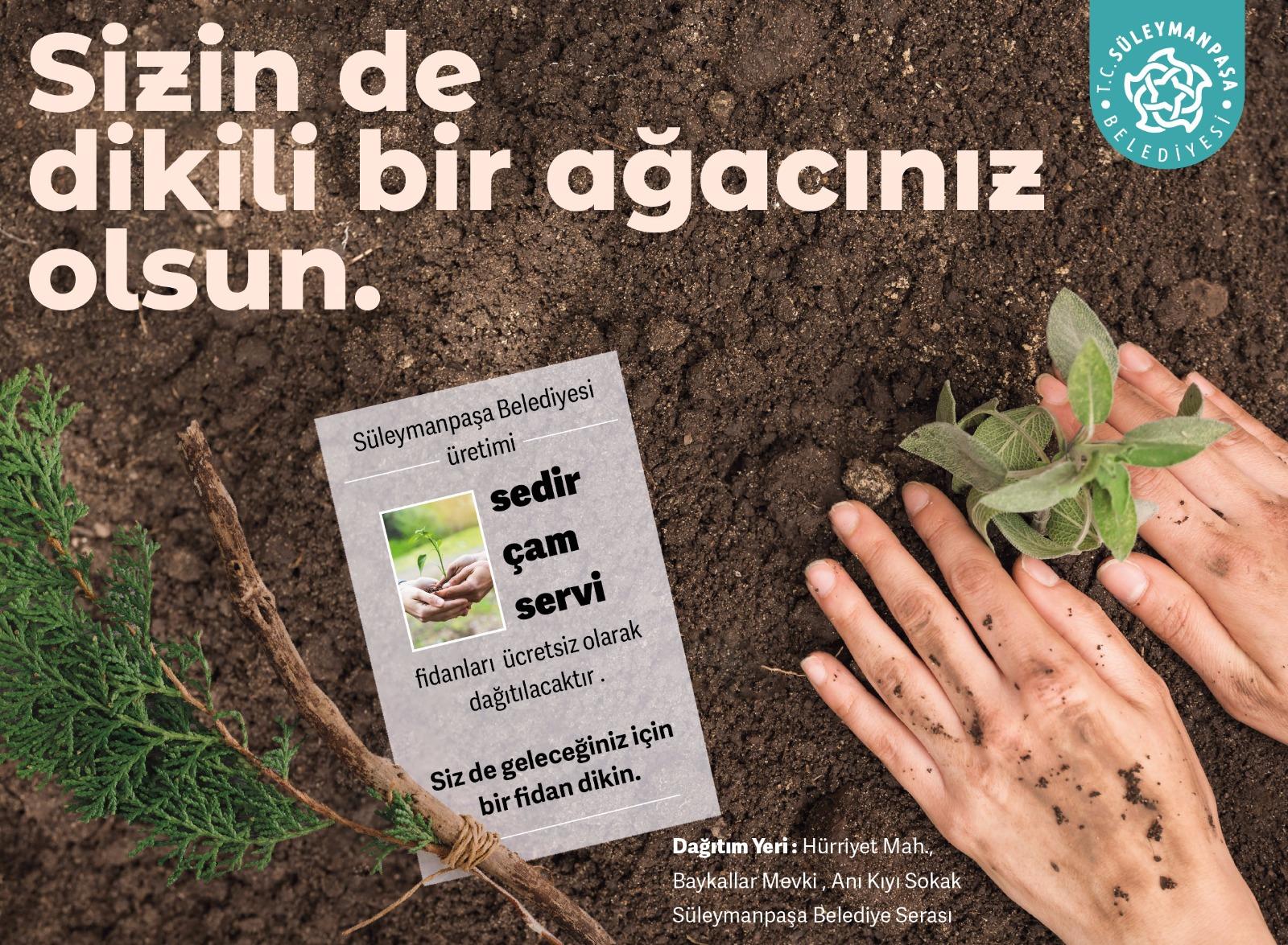 Süleyman Paşa Belediyesi ücretsiz fidan dağıtacak