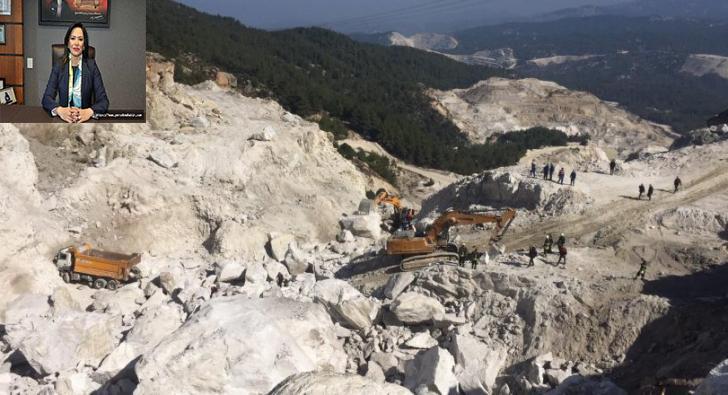CHP Tekirdağ Milletvekili Candan Yüceer müjdeyi verdi: Istranca'larda doğa katliamına geçit yok